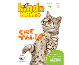 kind news kid's contest