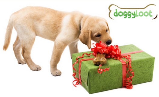 mystery dog loot