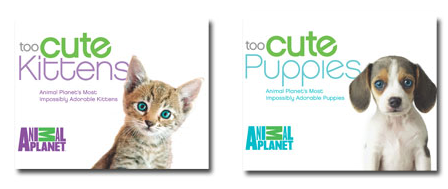 too cute puppies and kittens books