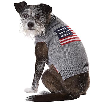Petco Veteran S Day Sale 20 Off Sitewide Free Shipping