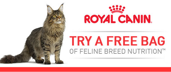 free royal canin cat food