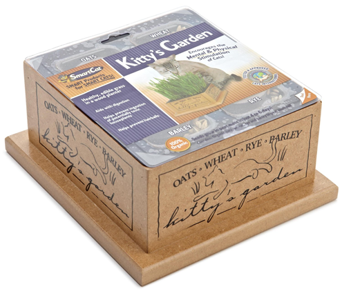 kitty garden kit