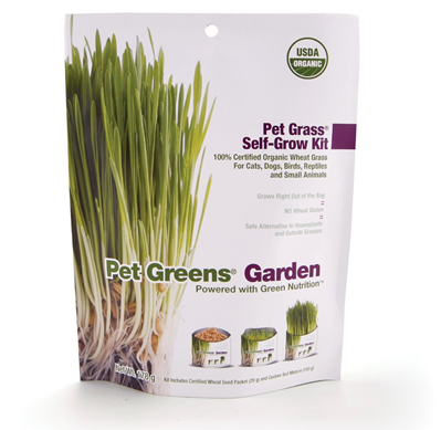 self grow pet grass