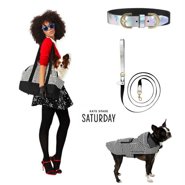 Kate Spade Pet Accessories