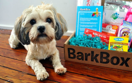 barkbox frida 450