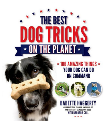 best dog tricks book
