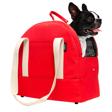 red kate spade pet bag