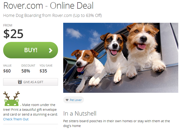 rover groupon deal