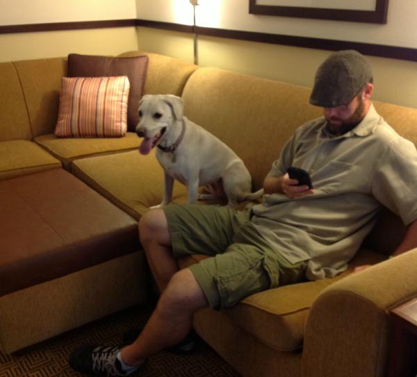 daisy hotel sofa