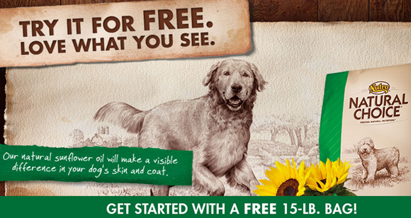 Coupons for president's choice dog food