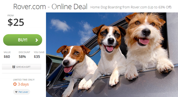 rover groupon winter deal