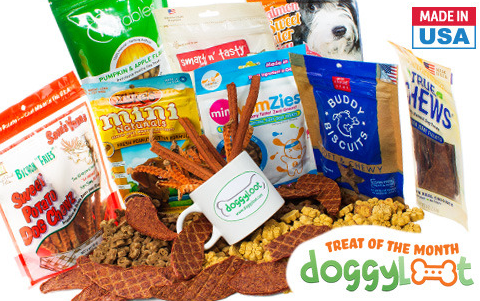 Treat of the month club for dogs