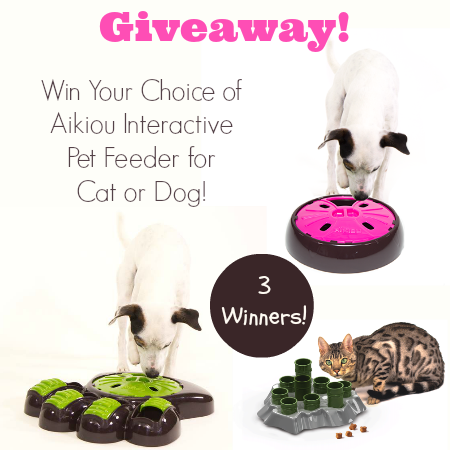 interactive pet feeder giveaway