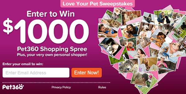 pet360 giveaway