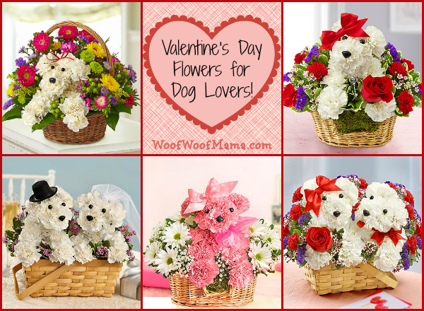Valentine's Day Flowers for Dog Lovers