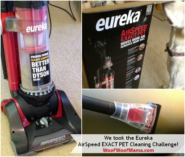 eureka pet cleaning