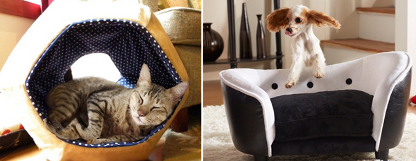 groupon pet furniture deals
