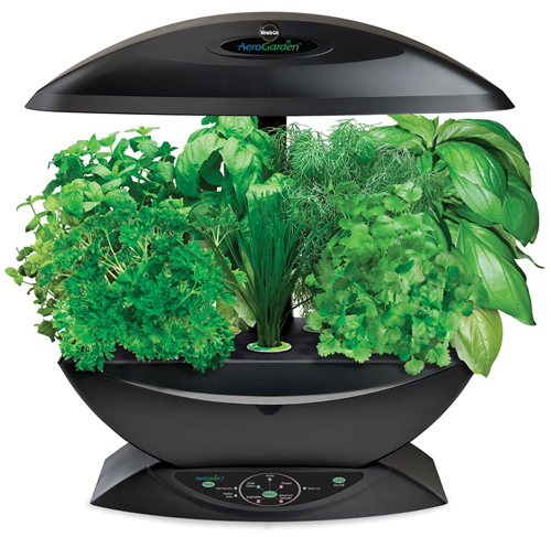 indoor herb garden kit aerogarden indoor herb garden with gourmet seed kit 99 28782