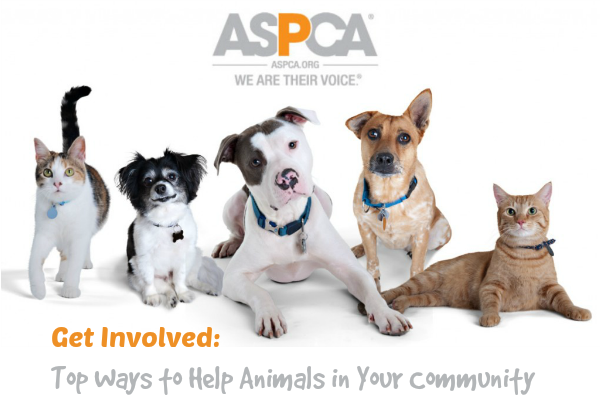 ASPCA Top Ways to Help Animals