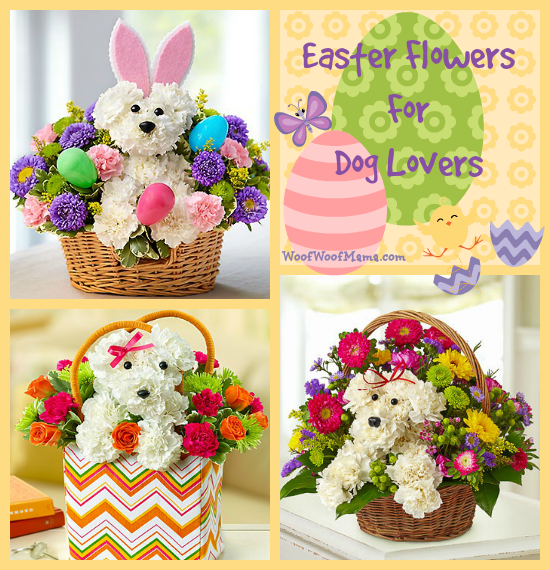 easter flowers dog lovers