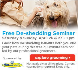 free dog grooming seminar