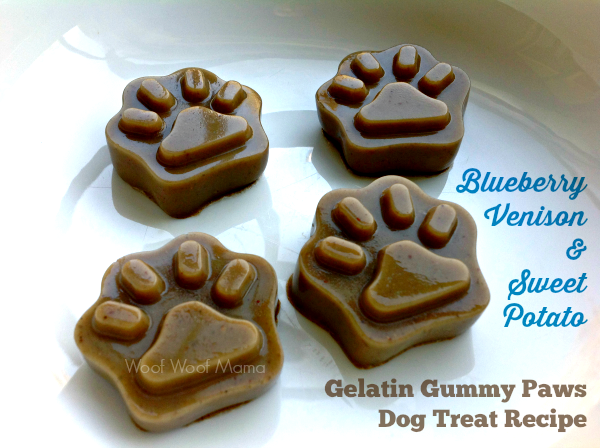 Gummy Paws dog treat recipe