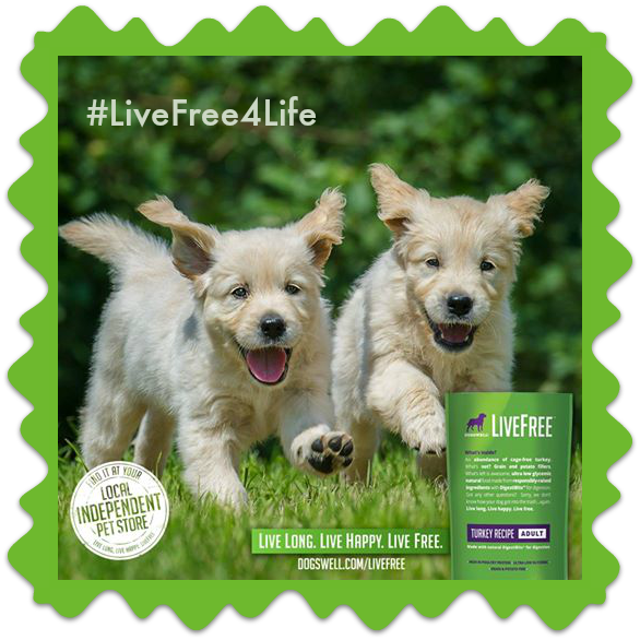 livefree dog food