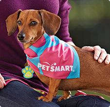 Petsmart 20 Discount Online Spring Sale Grooming Deals