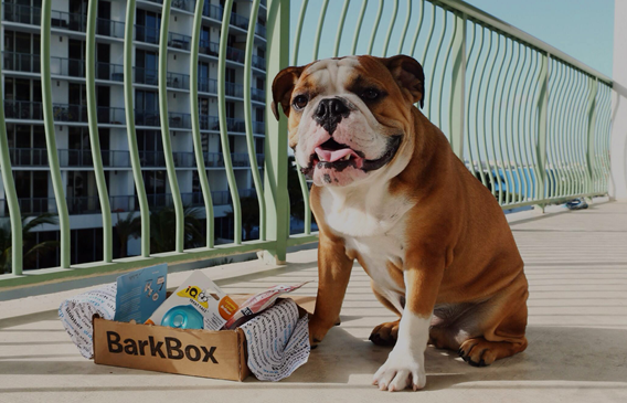 New BarkBox promo code for 10% off