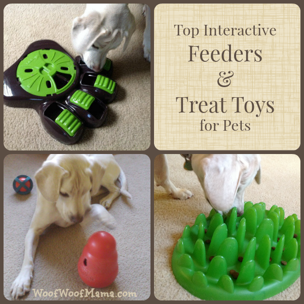 interactive treat toys and dog feeders