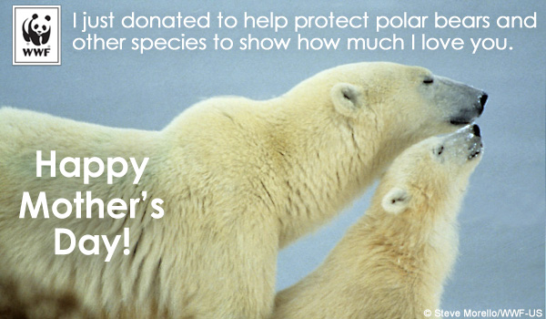 Donate to WWF for Mother's Day