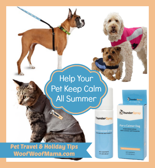 calm summer pet tips