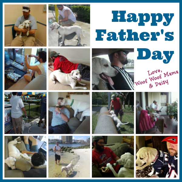 Happy Father's Day dog dads!