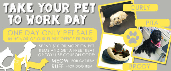 pet to work day sale