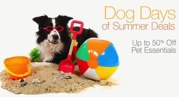 summer pet sale