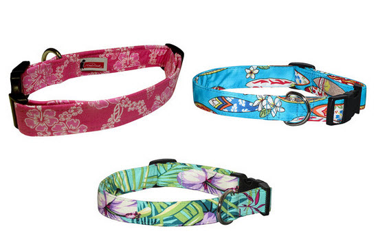 surf dog collars