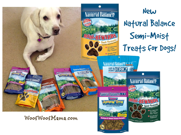 Natural Balance Semi Moist Dog Food