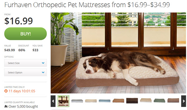 furhaven groupon pet deal
