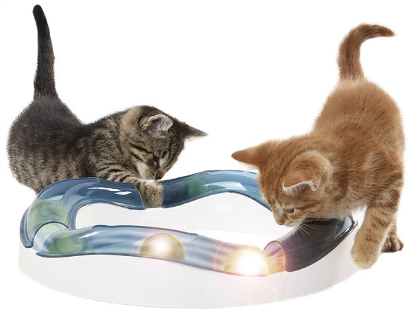 speed circuit cat toy