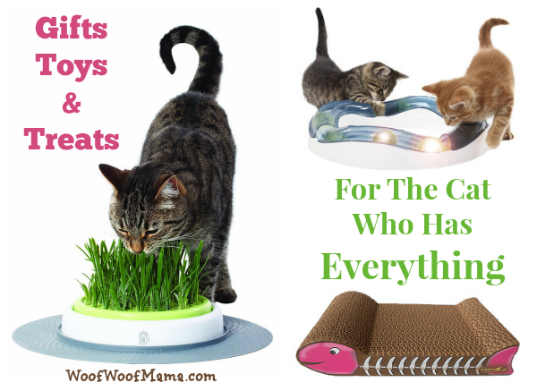 spoiled cat gifts
