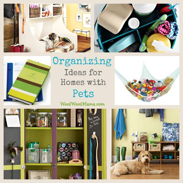 home organizing pets