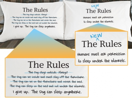 the rules pillowcase