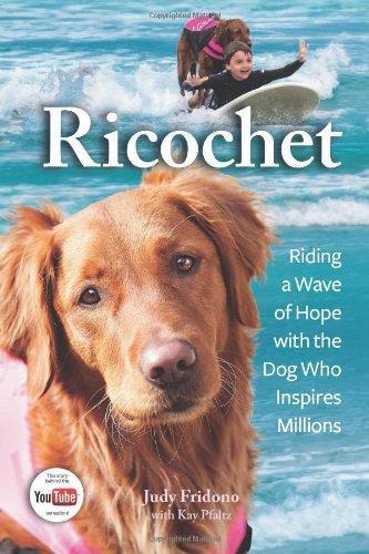 Ricochet book