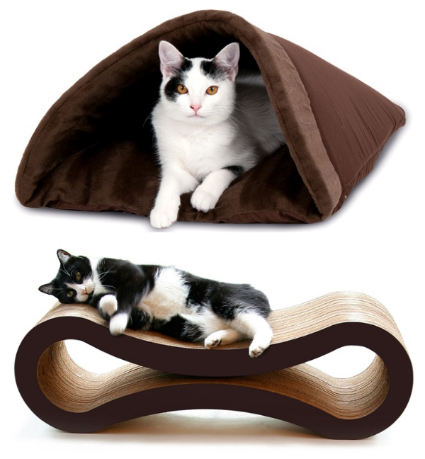 fancy cat beds