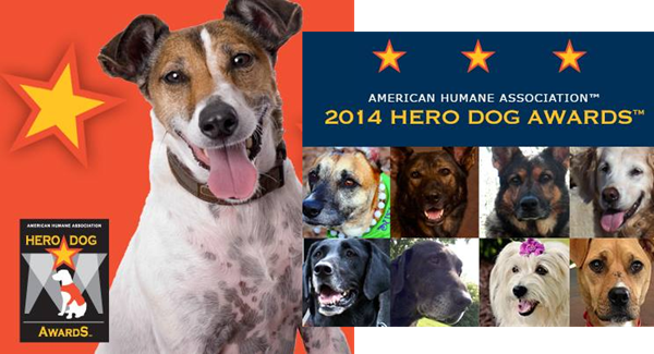 hero dog awards 2014