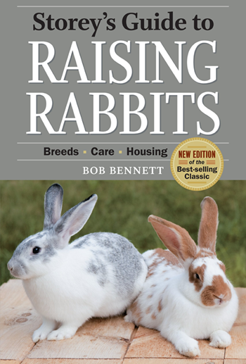 rabbit care book