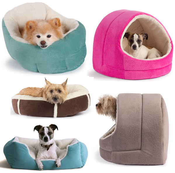 Cute Dog Beds Amazon