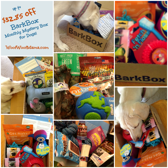 Bark box coupon code