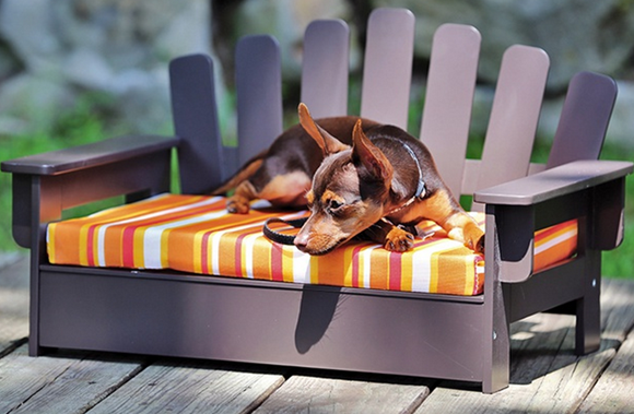 adirondack pet chair
