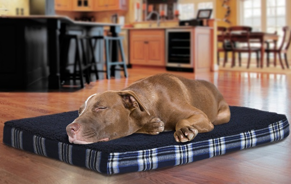 navy plaid pet bed